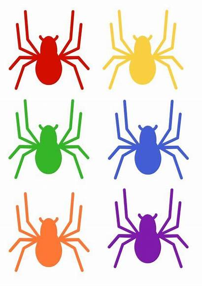 Activity Spider Circle Printables Themed Spiders Preschool