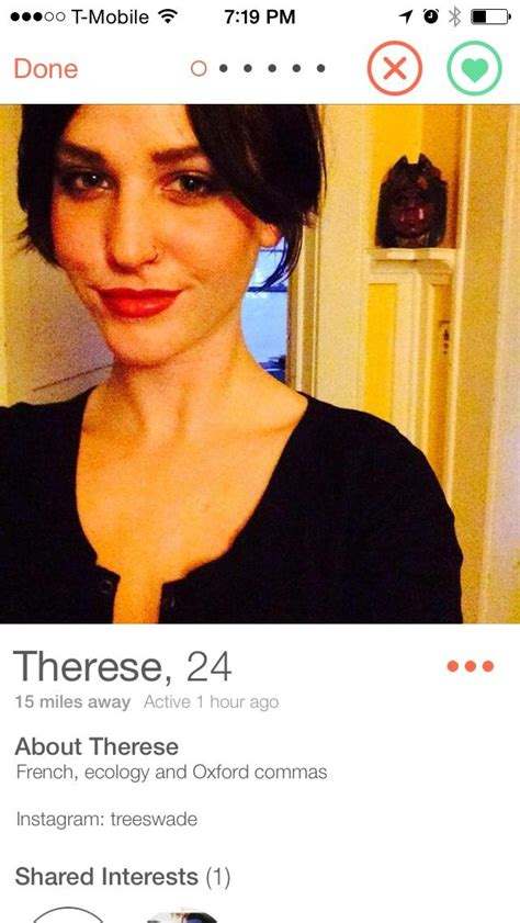 Tinder Memes - tinder profile oxford comma know your meme