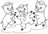 Coloring Pig Pages Pigs Three Printable Drawings Wolf sketch template