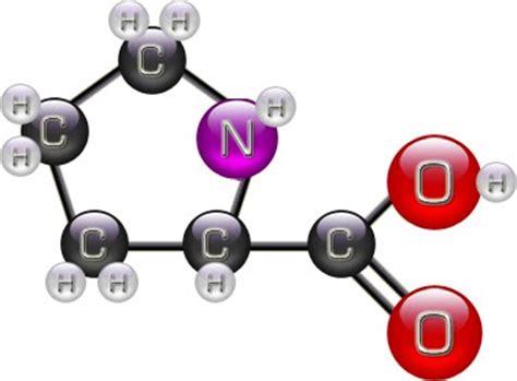 tpe cuisine moleculaire la gélification tpe cuisine moléculaire