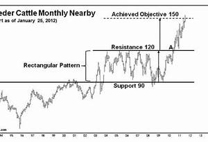 Drozd Cattle Rally To New Historical High To Begin 2012