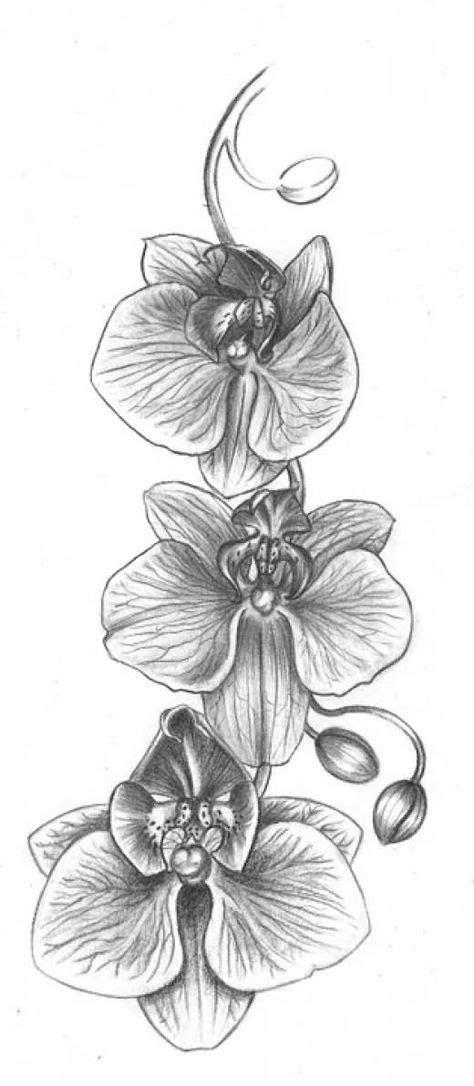Grey Ink Orchid Flowers Tattoos Design | Tattoos zeichnen