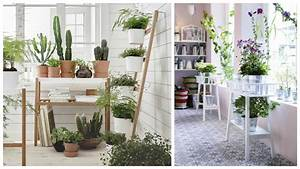 habiller les murs avec des plantes With affiche chambre bébé avec plantes vertes a fleurs