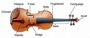 The Structure Of The Violin Learn The Parts Of The Violin - Musical Instrument Guide