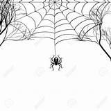 Spider Drawing Getdrawings sketch template