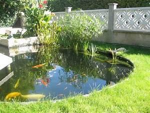 Bassin De Jardin Pour Poisson : les bassins de jardin un atout pour votre maison ~ Premium-room.com Idées de Décoration