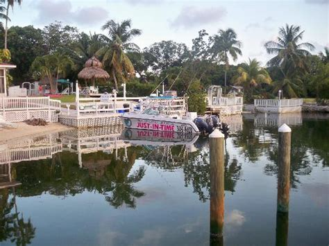Glass Bottom Boat Tours Marathon Fl by Water Sports In Key Largo Fl The Florida Visitor