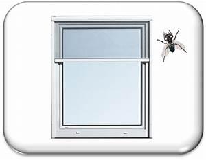 Fenster In Polen Kaufen : fenster auf mallorca kaufen ~ Michelbontemps.com Haus und Dekorationen