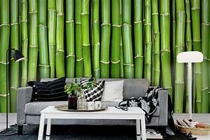 Wunderwall: Top Wallpaper Suppliers