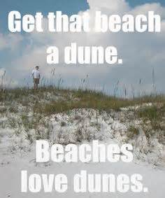 Funny Beach Memes - 1000 images about haha on pinterest memes drunk memes