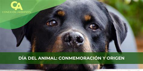 DÍA DEL ANIMAL: CONMEMORACIÓN Y ORIGEN - Conexion Ambiental