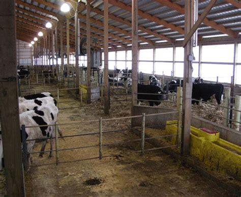 Cow Barn Plans