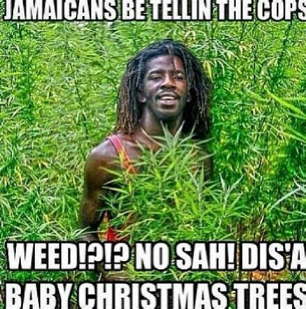 jamaicans    beer garden pinterest humor