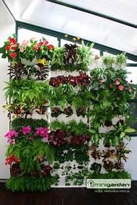 Pflanzen Automatisch Bewässern : das ewige pflanzengie en ging dir bisher auf den wecker der minigarden l sst sich mit dem ~ Frokenaadalensverden.com Haus und Dekorationen