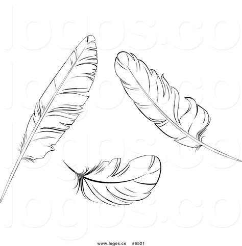 Feather clipart black and white - Pencil and in color ...