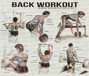 Back Workout Exercises For Men