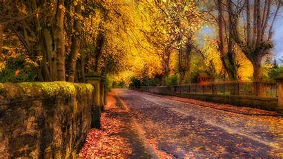 Autumn Trees Foliage Nature Street Fence Fall