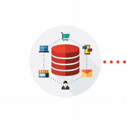 Customer Database Solutions Meaningful