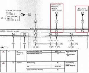 Haltech Sport 1000 Wiring Diagram