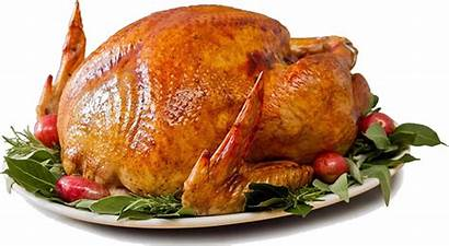 Turkey Cooked Thanksgiving Turkeys Christmas Meat Meal