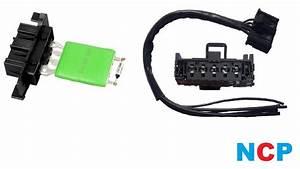 Peugeot Expert Citroen Dispatch Heater Blower Motor Resistor  U0026 Wiring Loom