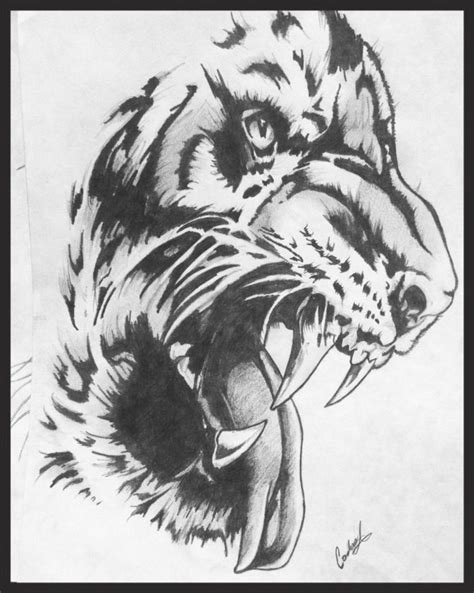 tiger, tigers, tiger drawing, tiger tattoo, drawing, best drawing, sketch, black and gray