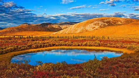 Autumn Yukon Bing Wallpaper Download