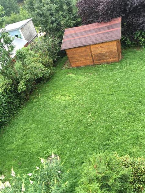 Naturnaher Garten Für Anfänger  Mein Schöner Garten Forum