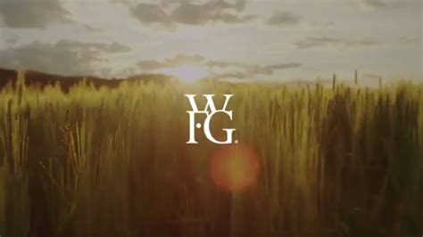 wfg world financial group wfg youtube