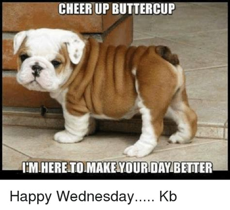 Cheer Up Cat Meme - cheerup buttercup nimiheretoimakenyourday better happy wednesday kb meme on me me