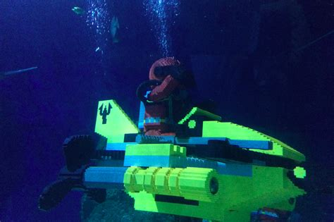 sea aquarium california top 10 tips to enjoy your time at legoland resort california