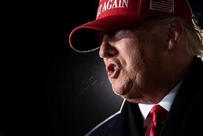 Trump Donald President Tweets Four Past Last