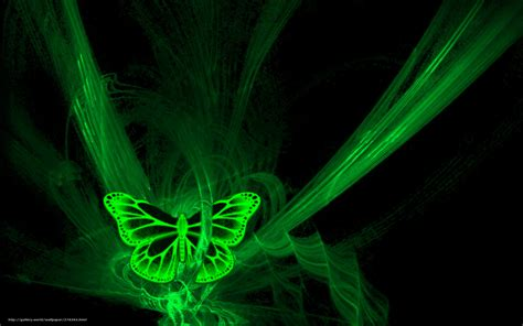 neon pour bureau wallpaper butterfly neon black green free