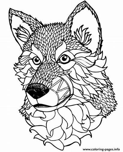 Mandala Coloring Dog Pages Animal Adult Printable