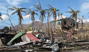 File:A few palm trees remain standing amid the destruction ...
