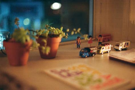 Pflanzen Im Kinderzimmer pflanzen im kinderzimmer ja klar waschb 228 r magazin