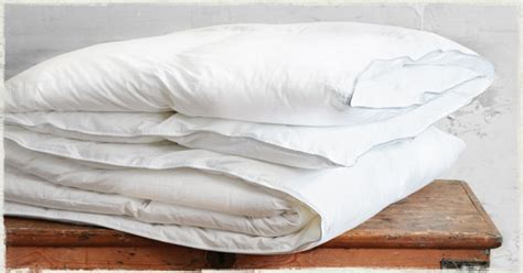 Goose Feather Duvet - 10 5 tog goose feather duvet