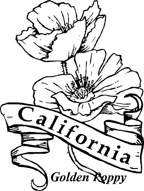 California State Symbols Coloring Pages California State Symbols California State Flower