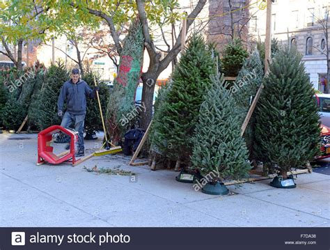 vendors selling christmas trees on the streets of new york
