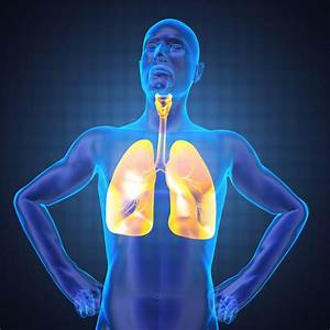 How Effective Is Advair Inhaler In Bronchospasm Treatment
