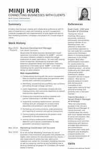 business development manager resume samples visualcv With business development executive resume format