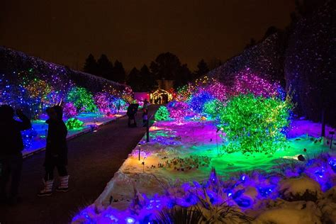 Denver Botanic Gardens Lights by Five Great Places To See Lights In Metro Denver