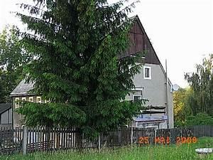 Mietkauf Eines Hauses : bauernhaus zur pferdehaltung ~ Lizthompson.info Haus und Dekorationen