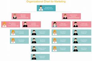 Creative Org Chart Examples