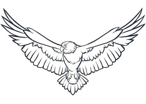 mewarnai gambar hewan burung elang belajarmewarnai info