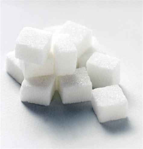 sugar cubes sugar cube tea blog