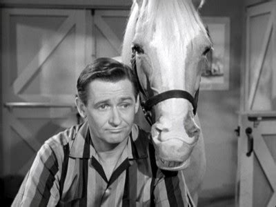 Mister Ed The Complete Fifth Season  Dvd Talk Review Of. Student Liability Insurance 1978 New Yorker. Admission Requirements For Yale. Business Telephone Rates Vdi Presentation Ppt. Senior Citizen Life Alert Schools In Portland. African American Laser Hair Removal. Latest Information Security News. Wv Personal Injury Lawyer Bank In San Antonio. Senior Business Consultant Business Ink Pens