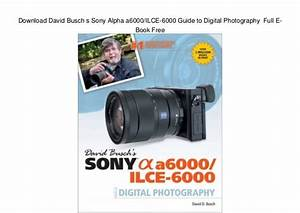 Download David Busch S Sony Alpha A6000  Ilce