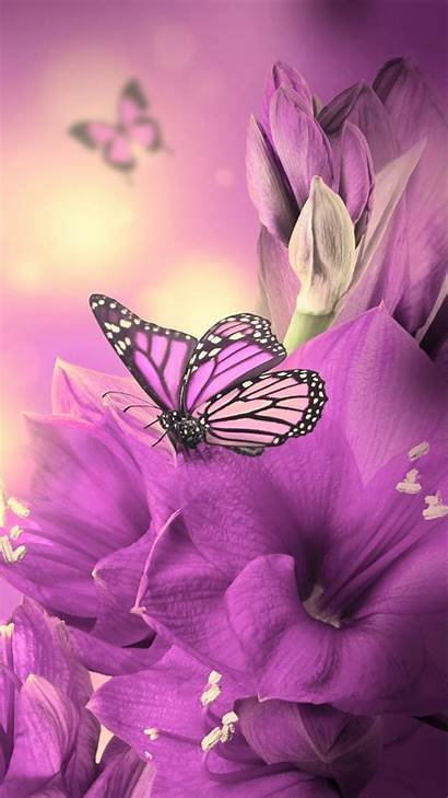 Mobile Wallpapers Phone Butterfly Animated