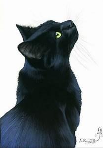 Black Cat Drawings | www.pixshark.com - Images Galleries ...